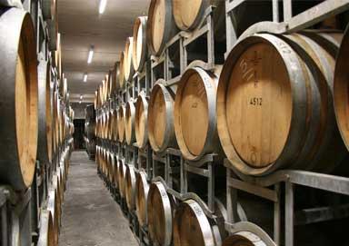 winery1_384x271